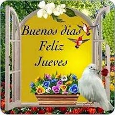 Imágenes con mensaje de buenos días Snoopy, Decor, Good Morning Image Quotes, Romantic Photos, Happy Thursday, Happy Day, Be Nice, Stained Glass Windows, Decoration