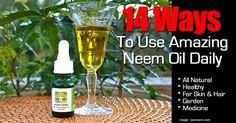 14 Ways To Use Amazing Neem Oil Daily