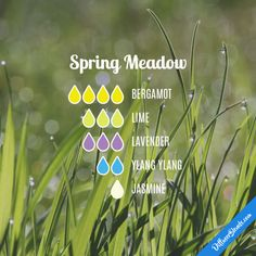 Spring Meadow - Essential Oil Diffuser Blend