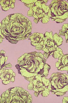 Abigail Ryan Rose Powder Puff - Wallpaper Ideas & Designs (houseandgarden.co.uk)