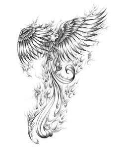 Artur mura phoenix custom tattoo designs on tattoo ideas for men phoenix meaning and designs Bird Drawings, Tattoo Drawings, Body Art Tattoos, Tatoos, Wing Tattoos, Dragon Drawings, Tattoos Skull, Sketch Tattoo, Dragon Tattoos