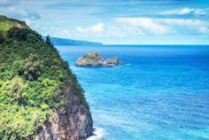 Kohala, Big Island, Hawaii:  #Caretaker needed for a property in the #Kohala region of the #BigIsland, #Hawaii