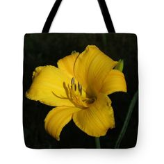 "Facing the Morning Sun Tote Bag 18"" x 18"""