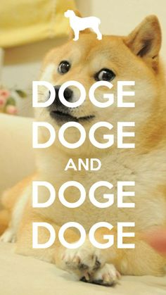 #Doge