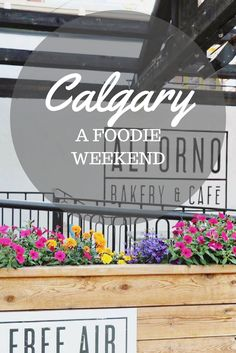 BEST NEW RESTAURANTS in Downtown Calgary for a Foodie Weekend