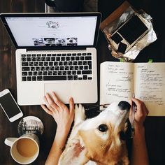 for when you have to work, keep woman's best friend close by | skirttheceiling