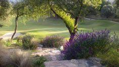 Potrerillo de Larreta Golf Course, Alta Gracia, Córdoba, Argentina. Direct Shot, no filters, taken with my cell phone.