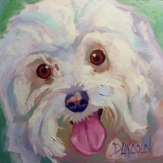 Kaydee - Mom's Maltese Poodle doggie portrait, painting by artist Debbie Grayson Lincoln
