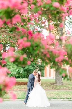 Flowering Tree Foregrounds of Bride and Groom Kissing | Katelyn James Photography