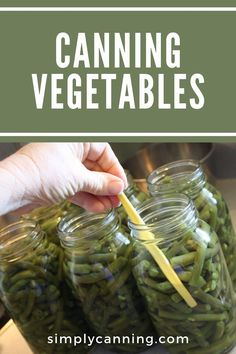 You shouldn't can vegetables in a water bath canner (unless you're making pickles), but don't let that stop you from canning vegetables fresh from the garden! Learn how to use your pressure canner and start canning vegetables. #SimplyCanning #CanningVegetables #Vegetables Making Pickles, How To Make Pickles, Canning Vegetables, Veggies, Beets, Farmers Market, Green Beans, Pantry, Carrots