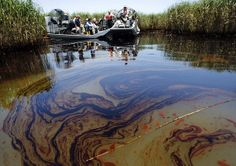 Judge denies BP's request to delay seafood claims payments