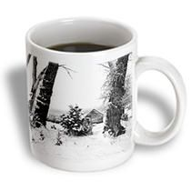 3dRose - Jos Fauxtographee Black and White - A Historical home in Pine Valley, Utah in the winter - Mugs