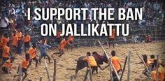 """ACTION ALERT! TELL INDIA: NO BACKTRACKING ON ANIMAL CRUELTY PROTECTIONS! The Ministry of Environment, Forests & Climate Change (MoEF&CC) has announced that it is planning to amend The Prevention of Cruelty to Animals Act, 1960, to allow the cruel so-called """"sport"""" jallikattu. This would fly in the face of a 2014 Supreme Court verdict that PETA India helped achieve which banned the use of bulls for spectacles like jallikattu, bull racing and bullfights. PLZ Sign and Share Widely In Protest!"""