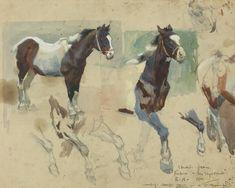 Horse Drawings, Animal Drawings, Art Drawings, Alfred Munnings, Horse Anatomy, Horse Portrait, Pencil Portrait, Animal Paintings, Horse Paintings
