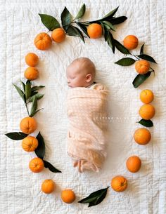 Newborn Baby Boy in Orange Fruit Wreath Frame   Justine Di Fede Photography   Lifestyle