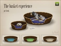 The Basket Experience - Pet beds for The Sims 3 by Gosik Play Sims 4, My Sims, Sims 4 Cc Furniture, Pet Furniture, Living Room Sims 4, Sims 4 Toddler Clothes, Sims 4 Pets, Muebles Sims 4 Cc, The Sims 4 Packs