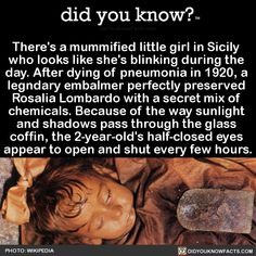 There's a mummified little girl in Sicily who looks like she's blinking during the day. After dying of pneumonia in a legndary embalmer perfectly preserved Rosalia Lombardo with a secret mix of chemicals. Because of the way sunlight and shadows. Wow Facts, Wtf Fun Facts, True Facts, Funny Facts, Random Facts, Weird But True, Creepy Facts, Interesting Facts About World, Interesting Stuff