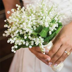 Lilly of the Valley--perfect size for flower girls or even as nosegay for Mother of the Bride/Groom