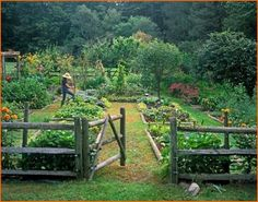 Pamela Page's organic kitchen garden in Bethel, Connecticut • photo: Lisa Hubbard on CountryLiving