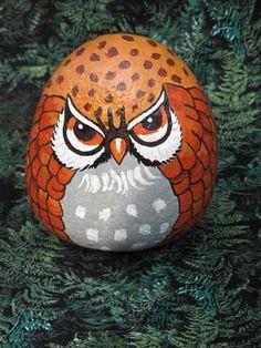 Scowling owl