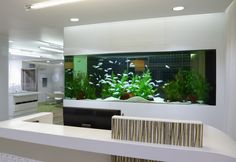 Cool 7 Extraordinary Aquarium Wall Decorating Ideas Aquarium fish design ideas on the table may be too general. Actually a lot of creative ideas to place the Aquarium to make it look unique and interest. Aquarium Architecture, Architecture Design, Fish Tank Wall, Fish Tanks, Home Renovation, Home Remodeling, Casa Magna, Aquarium Terrarium, Aquarium House