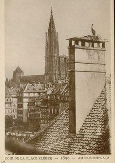 Vue sur la cathédrale depuis la Place Kléber vers 1890.
