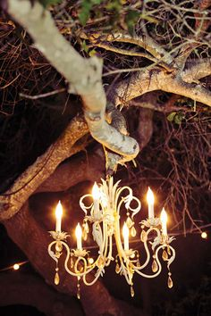 Wedding Trends Combine natural, outdoorsy details with elegant elements. - Get wedding planning advice and tips, décor inspiration, bridal party etiquette answers, and more from the experts at BridalGuide Rustic Wedding, Wedding Reception, Our Wedding, Dream Wedding, Wedding Dinner, Wedding Bells, Wedding Trends, Wedding Designs, Wedding Ideas