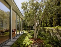 Sausalito Hillside Remodel / Turnbull Griffin Haesloop Architects