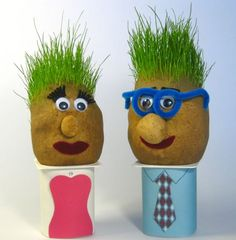 Grass heads - a fun homemade craft idea for kids and those young at heart