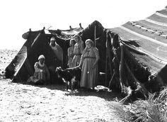 "Early nomad community in Algeria with ""neighbors.""     The ""top"" on their tent designated their belonging to the particular clan that ""adopted"" them."