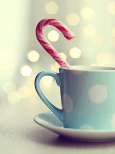 Christmas in the cup (processing)