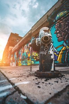 36 Best Street Art Examples To Inspire You - List Inspire Graffiti Pictures, Art Pictures, Background Images For Editing, Picsart Background, Best Street Art, Phone Photography, Street Art Graffiti, Photo Backgrounds, Farming
