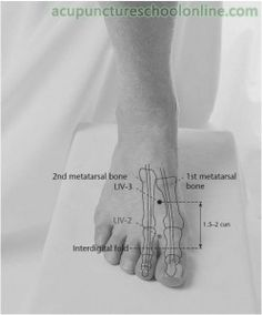 LIV-3 Great Rushing TAICHONG - Acupuncture Points -1