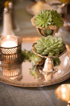 http://www.candisfloralcreations.com/blog/?tag=succulent-wedding-centerpieces