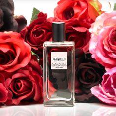 Gandini Red Rose and Peach Blossom