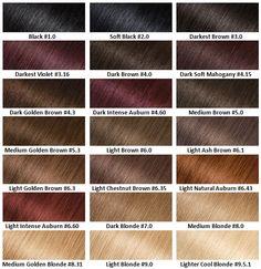 Garnier Olia Oli Ed Hair Colour No Ammonia From Canada At Well