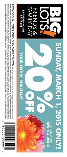 849e9c4a4ec2 Pinned February 25th  20% off everything Sunday at  BigLots  coupon via The