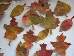 Fall leaves made from crumpled paper bags. Painted with diluted paint, sponged with metallic copper and then sprayed with tooth brush in diluted paint. Cut leaves on a sizzix machine.