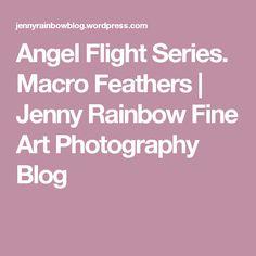 Angel Flight Series. Macro Feathers | Jenny Rainbow Fine Art Photography Blog Types Of Photography, Fine Art Photography, Angel Flight, Feathers, About Me Blog, Rainbow, Rain Bow, Rainbows, Feather