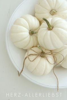 What a wonderful FALL { for your home } IDEA!  Wouldn't these twine-tied white pumpkins be beautiful on your coffee table or mantle?