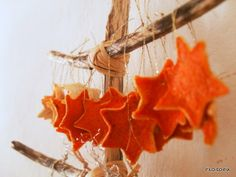 filo - so - pia: Bucce e stelle