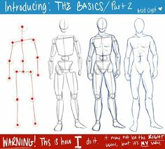Human Figure Drawing Reference The Basics Part 2 by WhitneyCook - Human Figure Sketches, Human Sketch, Male Figure Drawing, Body Reference Drawing, Body Sketches, Anatomy Sketches, Basic Drawing, Figure Sketching, Art Reference Poses