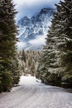 bonitavista:  Montana photo via kami