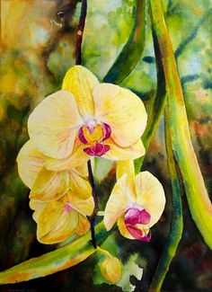 Paintings by Ross Barbera, Watercolor, Acrylic and Digital on Paper - Ross Barbera Orchids, Paintings, Watercolor, Digital, Paper, Beautiful, Art, Painting Art, Pen And Wash