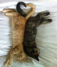 So much love - what a tender moment!