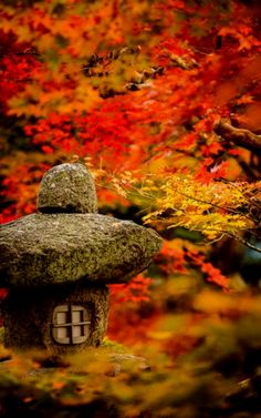 On-line AccessFull-text content material materials may be found at this web site by way of Enterprise Muse. Designing a Japanese panorama is a big approach to supply an outdoor sanctuary in your yard…MoreMore #JapaneseGardens