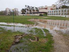O Palhetas na Foz: Hoje de manhã foi 'chuva-a-dar-cum-pau'!