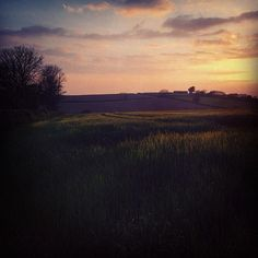 Beautiful light this evening #landscape #photography #countryliving #loveCornwall #walkswithethel