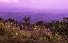 Donna Collins- Fine Art America-Purple Mountain Majesty-Blue Ridge Parkway- Boone, NC - Print available for purchase