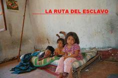 La Caja de Pandora: La historia olvidada de los niños esclavos mexican...